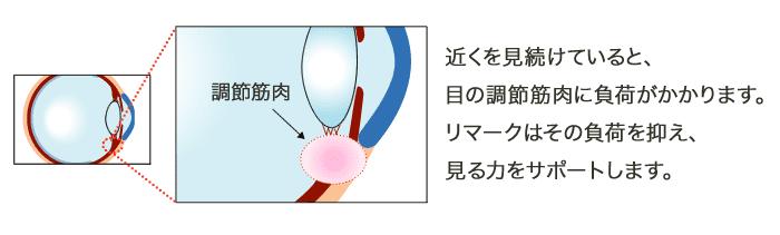 近くを見続けていると、目の調節筋肉に負荷がかかります。リマークはその負荷を抑え、見る力をサポートします。